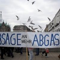 protest-gegen-illegale-baumfaellungen-16